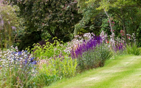 Northern Scotland Garden - 4